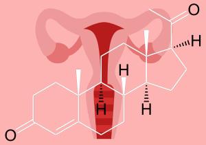 Progesterón